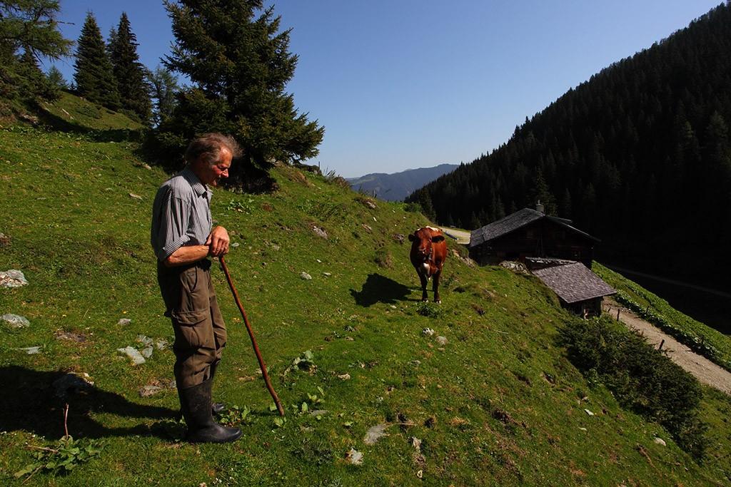 Wandern Harbachalm